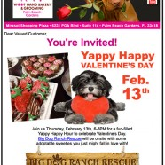 Woof Gang Bakery PBG Email Newsletter