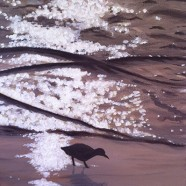 Original Fine Art for Wine & Canvas Orlando: Sandpiper